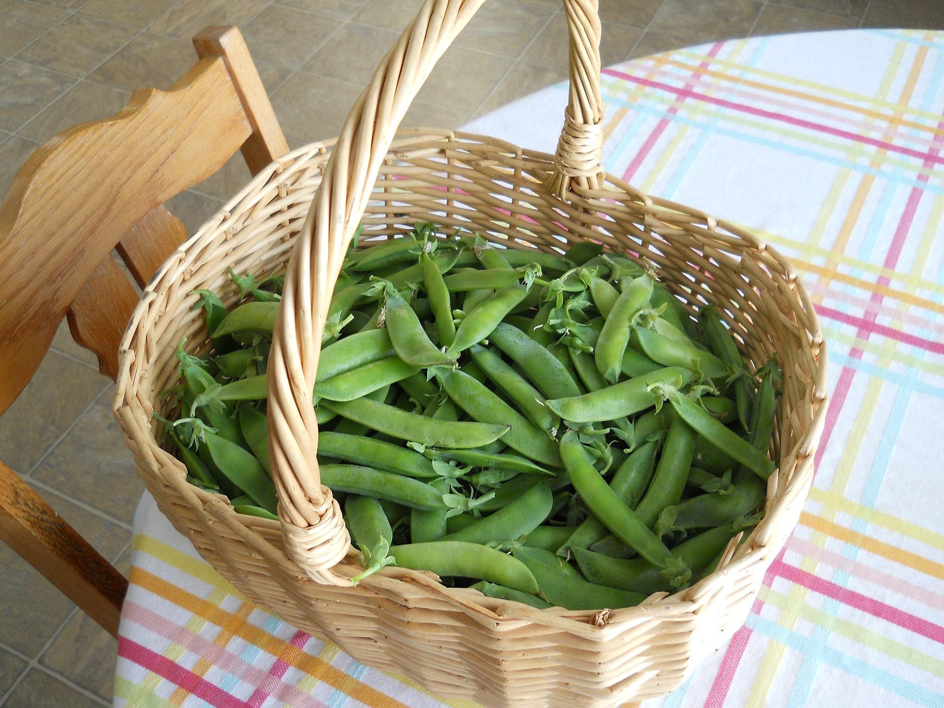weight loss peas